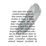 Ein Text, leicht wie eine Feder