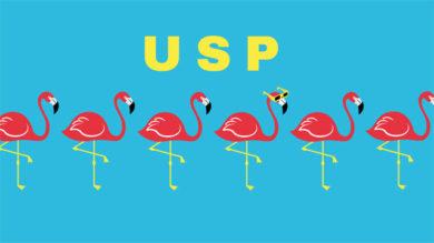 Alleinstellungsmerkmal USP