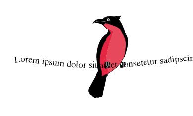 Zeilenvogel